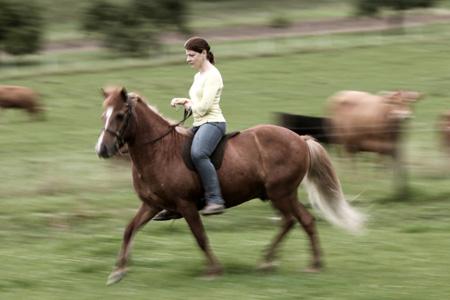 Pferd Reiten Lernen Reiten Fühlen Lernen